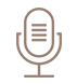 microphone icon2